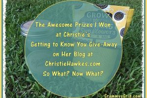 I WON CHRISTIE'S GETTING TO KNOW YOU GIVE-AWAY!