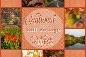 NATIONAL FALL FOLIAGE WEEK 2017