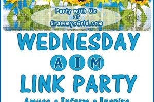 WEDNESDAY AIM LINK PARTY 24