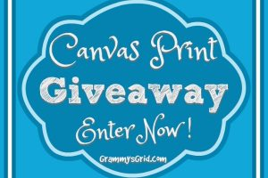 CANVAS PRINT GIVEAWAY AND REVIEW OF CANVAS FACTORY
