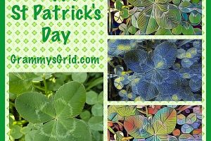 HAPPY ST PATRICK'S DAY - CLOVER ALTERED ART #HappyStPatricksDay #StPaddysDay #clover #shamrock #alteredart #art #holiday #StPatrick #SaintPatrick