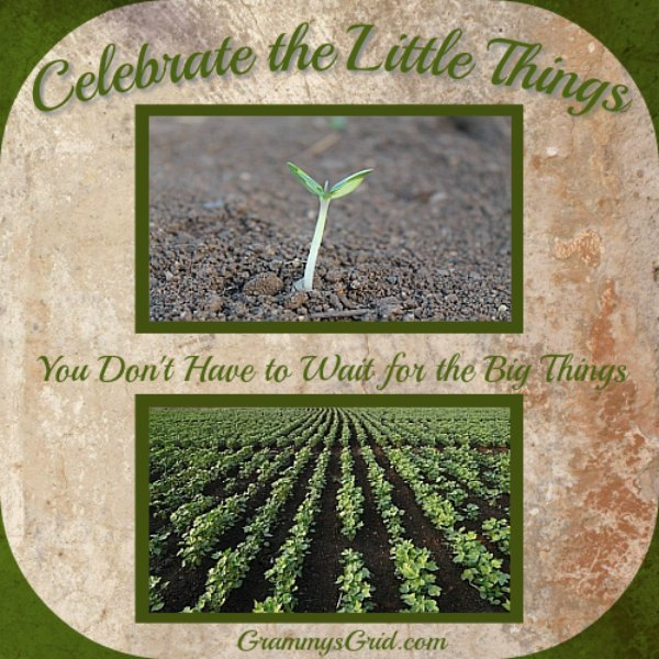 Inspiration - Celebrate the Little Things