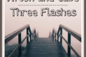 AFTON AND GABE – THREE FLASHES