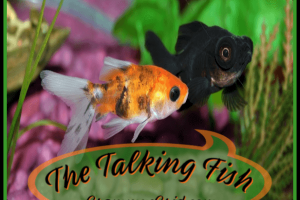 THE TALKING FISH
