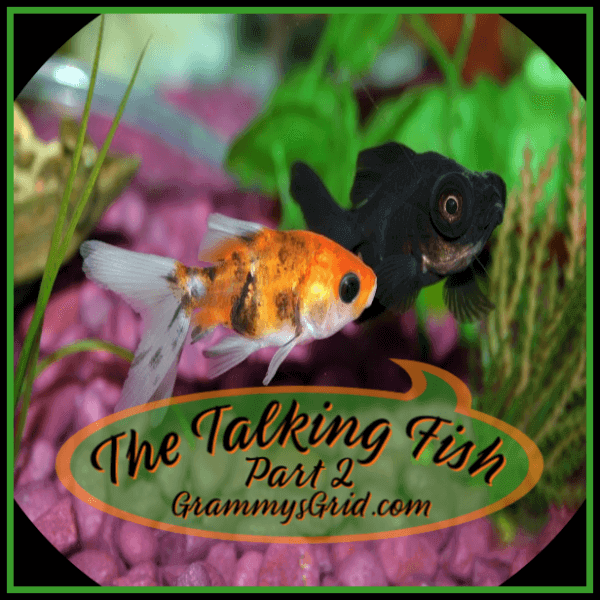 THE TALKING FISH - PART 2 is a short story that has been added to the #ShortStoryPromptLinkParty 12. Use the prompt, create your story, and then add it to the party! No story is too short! #WritingPrompt #ShortStory #WriteAStory #LinkParty #BlogParty #GrammysGrid