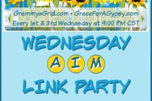 WEDNESDAY AIM LINK PARTY 35