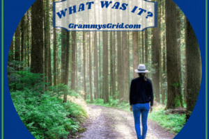WHAT WAS IT? (ANIMAL 75 WORDS PROMPT) #writing #prompt #WritingPrompt #ShortStory #LinkParty #animal #75words