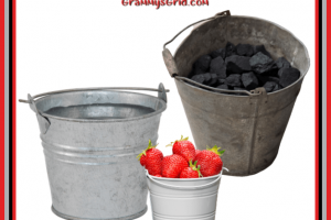 A BUCKET OF... (BUCKET PROMPT 100 WORDS) #writing #prompt #WritingPrompt #ShortStory #LinkParty #bucket #100words #water #coal #strawberries